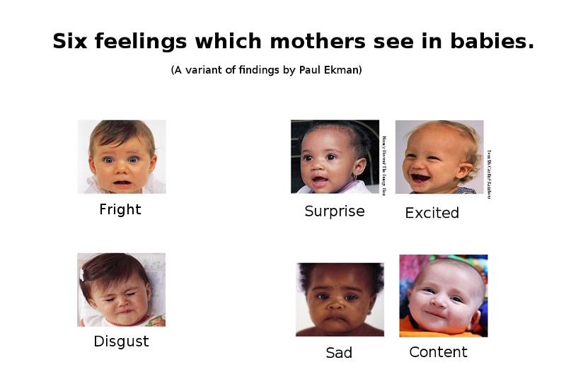 ekmans six basic emotions list amp definitions video - 800×543